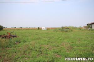 Teren 346,000 mp zona Arad , livada si teren agricol - imagine 16