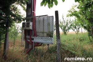 Teren 346,000 mp zona Arad , livada si teren agricol - imagine 15