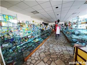 Spatiu comercial pe CALEA BUCURESTI (DN1) -Darste.-122 mp - imagine 10