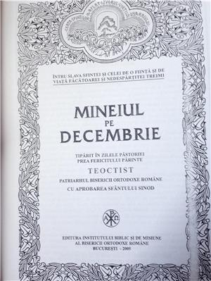 mineiul pe decembrie imbracat in piele ecologica - imagine 4