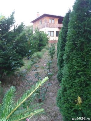 Casa de vanzare Dumitresti Galoesti Vrancea - imagine 4