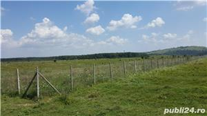 22.000 mp Baicoi Prahova  - imagine 5