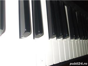 Solista muzica usoara - imagine 1