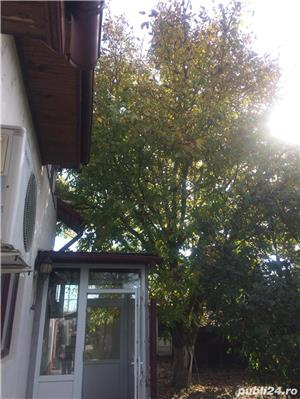 casa P+M Bolintin Vale, comuna Draganeasca - imagine 4