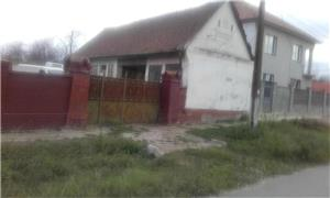 Vand Casa Petrovaselo - imagine 5