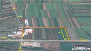 Teren 10.000 mp langa Weber, Vorona, la DN E58 spre Gura Hum - imagine 1