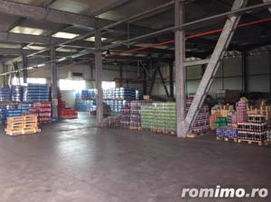 Hala Depozitare/Productie, Zona Mehala - imagine 4