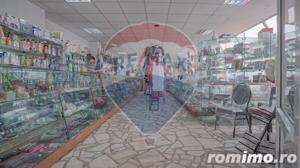 Comision 0 % ! Spatiu comercial 330 mp, Calea Bucuresti - imagine 11