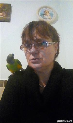 Pierdut papagal - imagine 3