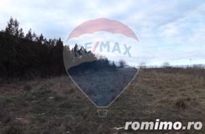 Teren Intravilan 988 mp Sibiu / Strada Dd Rosca din Turnisor - imagine 4