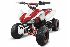 OFERTA  IMPORT GERMANIA ATV  SPEEDY 125 cc CASCA CADOU!!!!! - imagine 4