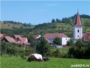 Casa saseasca renovata, cu 2 apartamente si teren 6380 mp , Seica Mare, Sibiu - imagine 1