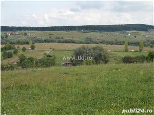 Teren intravilan de vanzare Sibiu - imagine 6