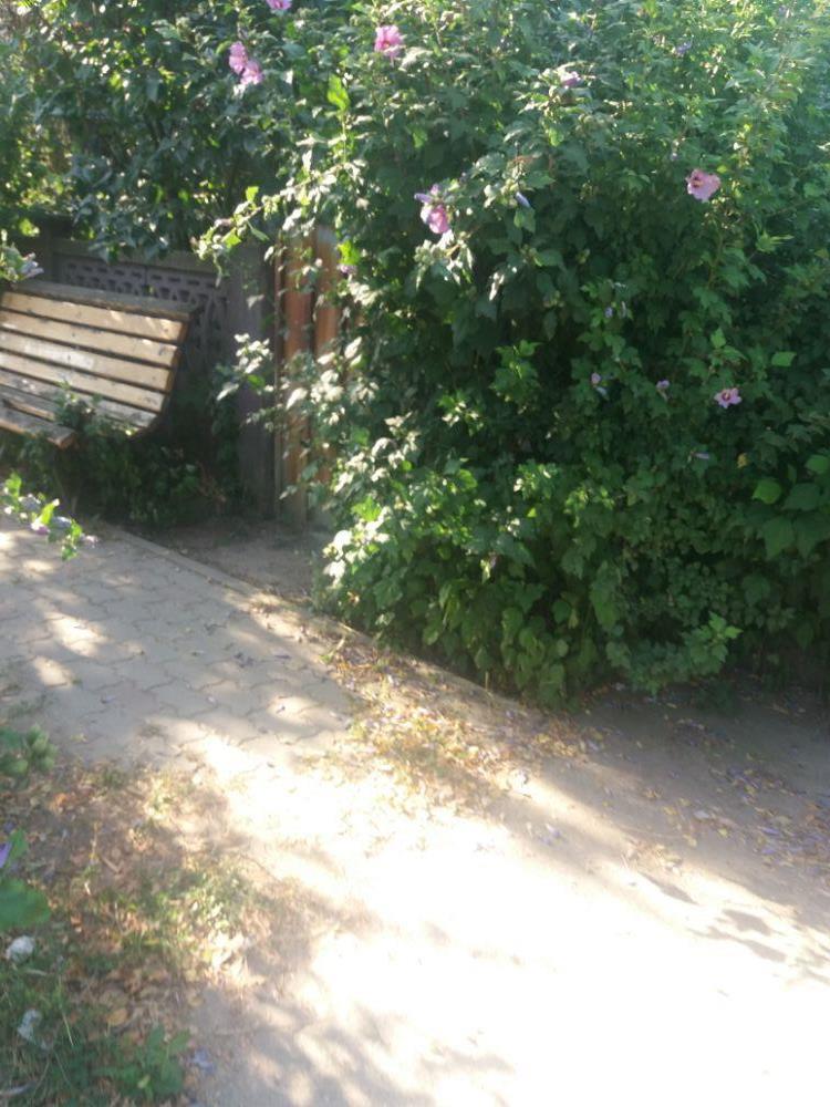 Casa com Bolintin Deal la 10 min de Bucuresti - imagine 5