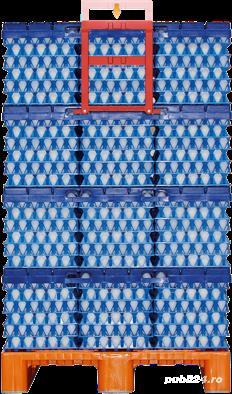 cofraje oua din plastic , rezistenta 8-10 ani - imagine 2