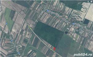 Teren de vânzare lângă autostrada A1 București - Pitești. Super ofertă - imagine 3
