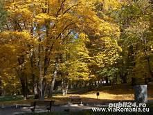 * Apartament Giulio * Sibiu-Valea  Aurie * inchiriere-regim hotelier * - imagine 19