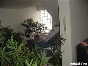 Gradinari Giurgiu Casa+teren 23000mp - imagine 7
