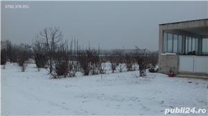 Gradinari Giurgiu Casa+teren 23000mp - imagine 4