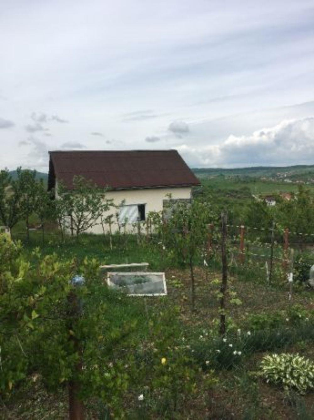 Vand/schimb casa cu teren drumul sigmirului - imagine 4