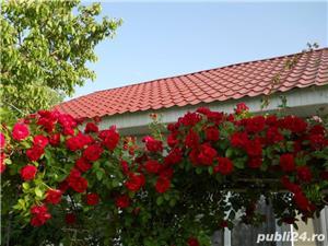 Vand casa la tara in Comuna Perieti-Olt - imagine 1