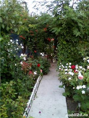 Vand casa la tara in Comuna Perieti-Olt - imagine 9