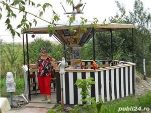 Vand casa la tara in Comuna Perieti-Olt - imagine 10