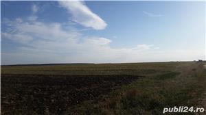Teren agricol zona Gradinari langa Hobaia - Accept schimburi - imagine 3