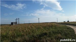 Teren agricol zona Gradinari langa Hobaia - Accept schimburi - imagine 2