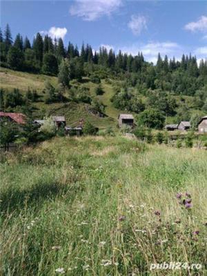 teren intravilan 25 km de Vatra Dornei - imagine 2