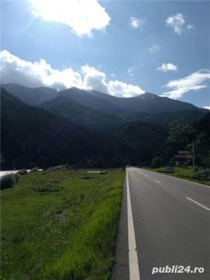 teren intravilan 25 km de Vatra Dornei - imagine 6