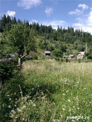 teren intravilan 25 km de Vatra Dornei - imagine 8