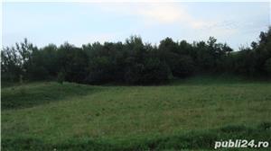 Vand teren in sat Poiana, comuna Negresti, judet Neamt - imagine 1