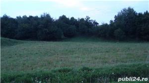 Vand teren in sat Poiana, comuna Negresti, judet Neamt - imagine 3