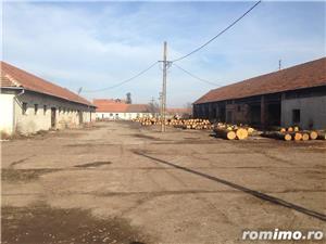 De vanzare ferma cu constructii in comuna Belint cu teren intravilan de 2,87 ha, in zona centrala - imagine 1