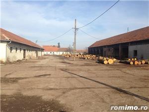 De vanzare ferma cu constructii in comuna Belint cu teren intravilan de 2,87 ha, in zona centrala - imagine 7