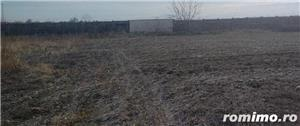 De vanzare ferma cu constructii in comuna Belint cu teren intravilan de 2,87 ha, in zona centrala - imagine 3
