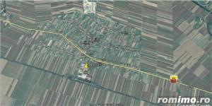 De vanzare ferma cu constructii in comuna Belint cu teren intravilan de 2,87 ha, in zona centrala - imagine 5