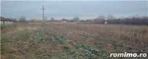 De vanzare ferma cu constructii in comuna Belint cu teren intravilan de 2,87 ha, in zona centrala - imagine 4