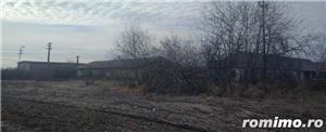 De vanzare ferma cu constructii in comuna Belint cu teren intravilan de 2,87 ha, in zona centrala - imagine 2