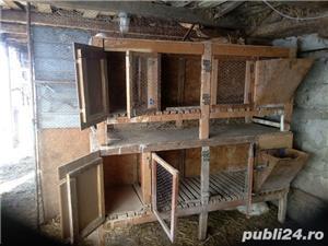 Cușcă pentru iepuri - imagine 2
