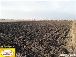 Teren arabil la sosea, Prejmer - imagine 2