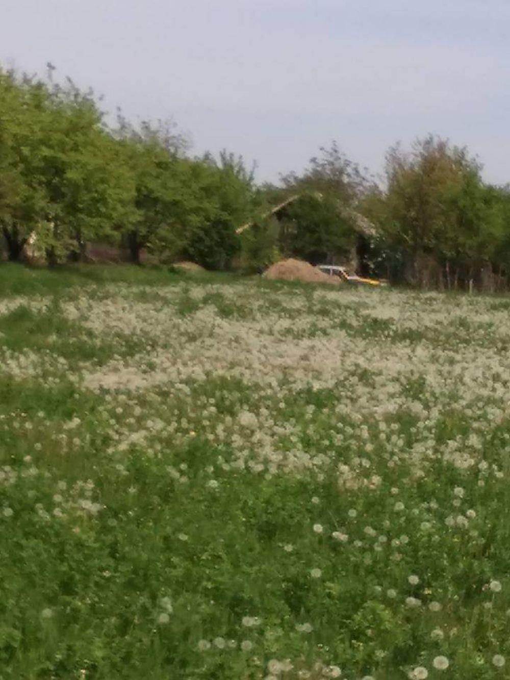 Teren Comuna Gruiu, sat Santu-Floresti - imagine 1