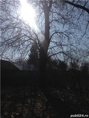 casa batraneasca cu teren - imagine 10