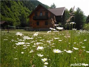 Cabana Lăcrămioara, sat vacanta Dejani, 20 km de Fagaras, jud. Brasov - imagine 7
