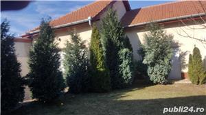 Vand vila in Paleu , in fosta ferma , P+M , ctr 2012 , teren 524, mobilata. - imagine 3