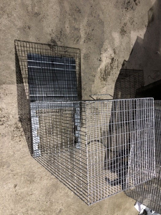 Capcana ecologică caini,pisici 120 cm.     - imagine 4