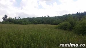 1.400 mp teren intravilan, in incantarea naturii, Sacele, Brasov - imagine 4