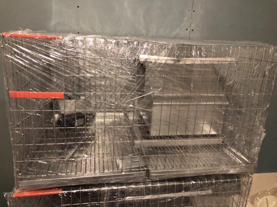 Cusca iepuri reproductie ( rasa uriasa) /200 cm - imagine 6