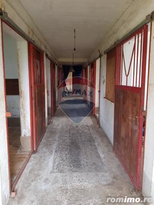 Vila pe un domeniu de 6 hectare in Sauaieu/Bihor - imagine 5